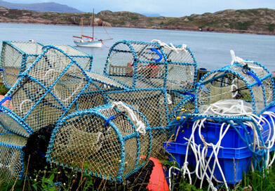 fishing nets boxes 392x272