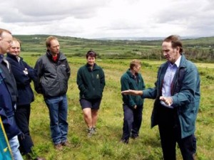 Vegetation management under discussion on grazing commons, Wales