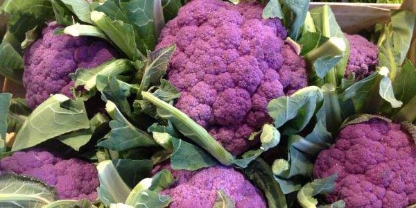 Purple Produce 600x300