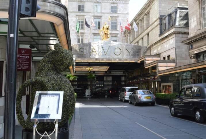 Outside the Savoy with bush pruned as Kaspar the cat