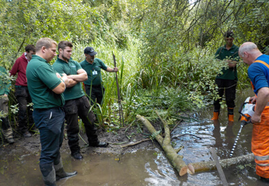 WILD project. Swill Brook at Lower Mill Estate. (Copyright Cotswold Water Park Trust)