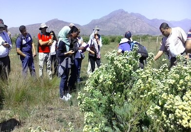 Field trip at the Tri-lateral Researcher Links Workshop in South Africa