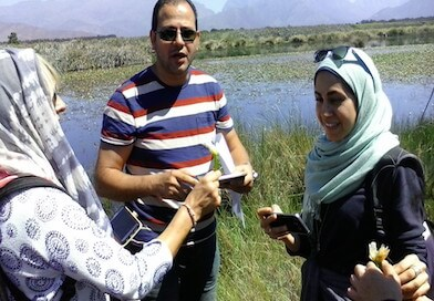 Field trip as part of the Tri-lateral Researcher Links Workshop in South Africa