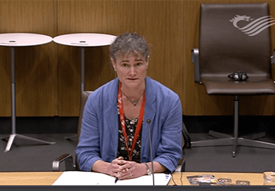 Janet Dwyer speaking at the Welsh Assembly