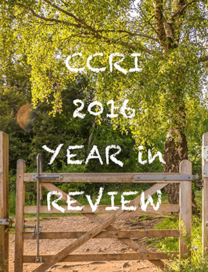 2016_year_in_review-cover
