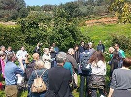CCRI team attend SoilCare meeting in Crete