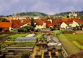New Research Summary available: Urban horticulture and local food: identity, governance and economy in Bath and Bamberg