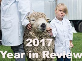2017 Year in Review launched today!