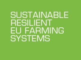 East Anglian arable farmers wanted for international project