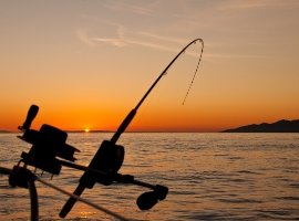 ESRC Wales Doctoral Training Partnership PhD Studentship: Recreational Fisheries