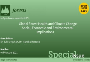 Julie Urquhart to guest edit special issue of 'Forests'