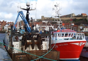 CCRI research into fishers' participation in management and science of fisheries published by Defra