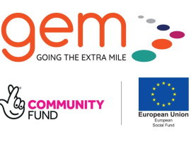 Going the Extra Mile in Monitoring and Evaluation – the GEM Story