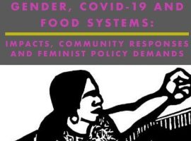 Gender, COVID-19 and Food Systems: Impacts, Community Responses and Feminist Policy Demands