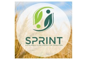 SPRINT project features in Open Access Government magazine