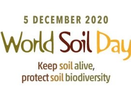 World Soil Day 2020 – Keep your soils alive
