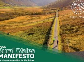 Reflections on a Rural Vision for Wales