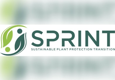 SPRINT (Sustainable Plant Protection Transition: A Global Health Approach)