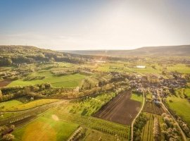 Survey of businesses in the South West to shed light on rural resilience during COVID